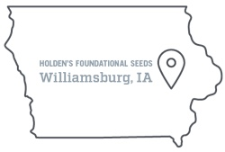 Holden's foundational seeds in Williamsburg, Iowa